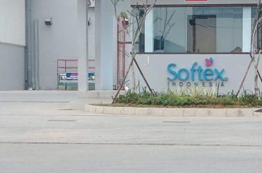 softex_image_4_rev